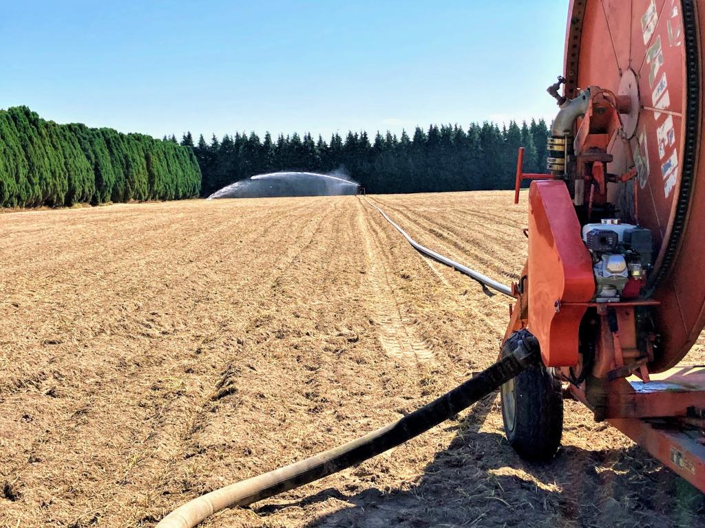 Irrigation_reel-20200813-1024px